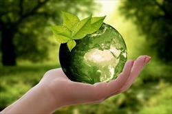 Junte-se a um Negócio 100% Ecológico!