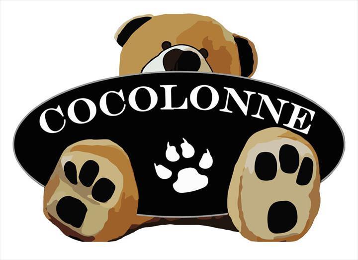A popularidade da Cocolonne